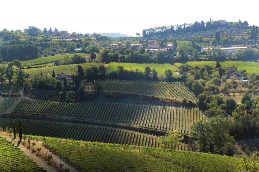 Panzano in Chianti, Italy | universityfoodie.com