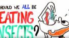 Insectos ¿La comida del futuro?