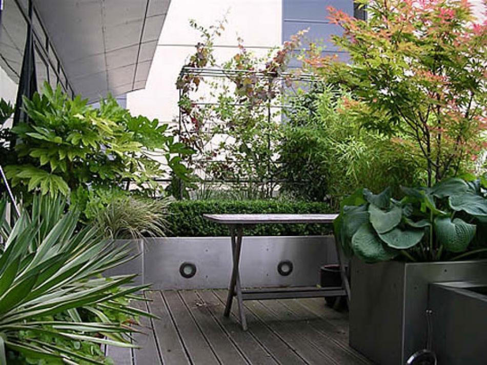 V Di Vaso Come Coltivare Gli Arbusti Ornamentali