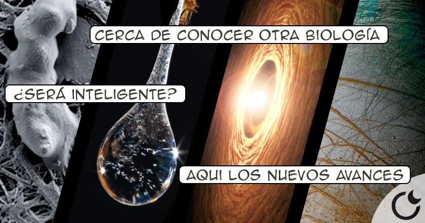 apuntodehallarvidaenplanetas