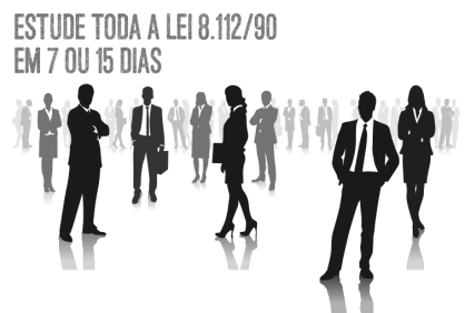 Lei 81290 Todo Dia