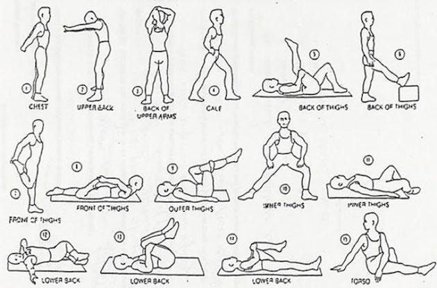 beginner upper body circuit running and exercise pinterest