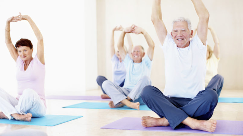 Yoga Stretching And Exercise For Enhanced Mobility In Seniors