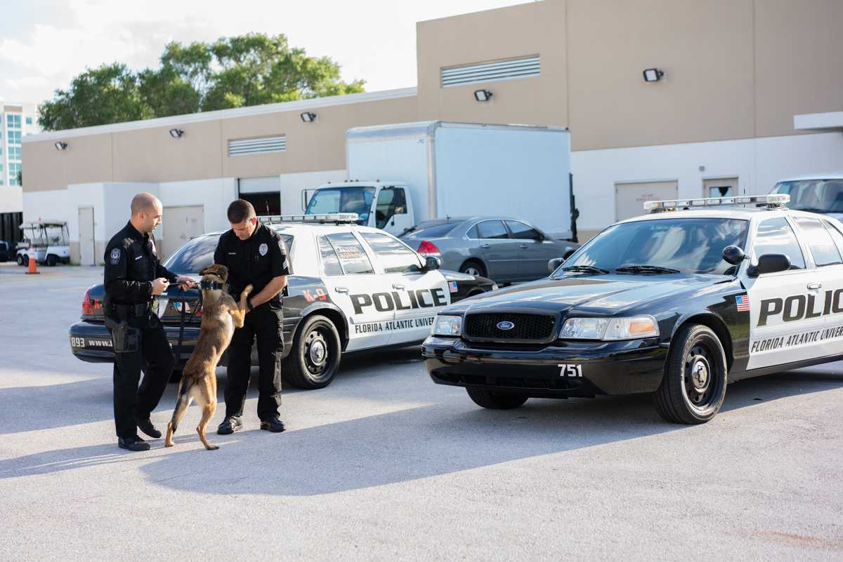 Campus police hire three dogs for K-9 unit
