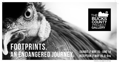 Footprints. An Endangered Journey