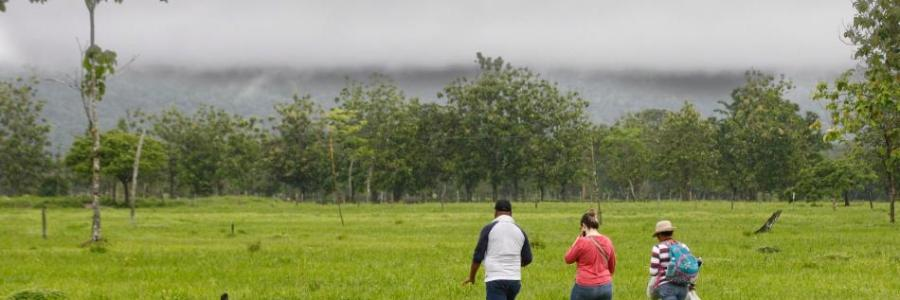 Devuelven tierras a víctimas de violencia paramilitar en Urabá