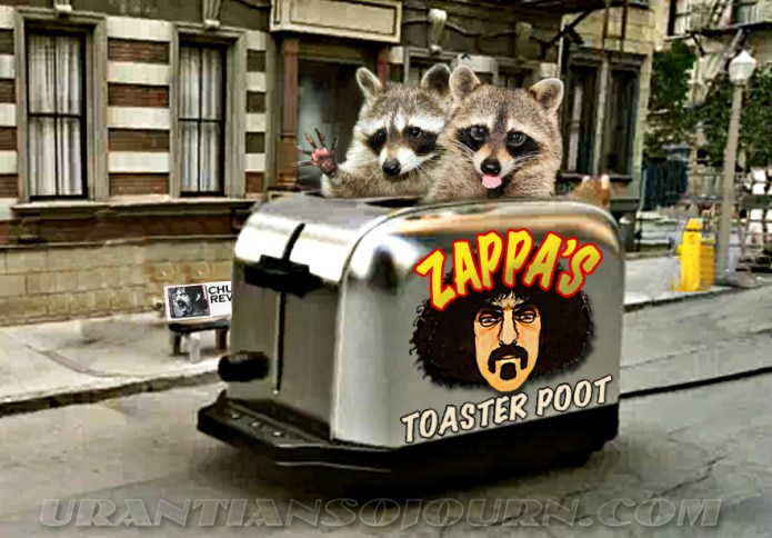 Raccoon Toaster Poot Cruiser