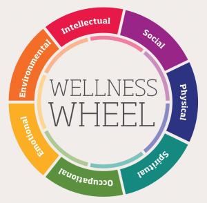 wellness_wheel_1
