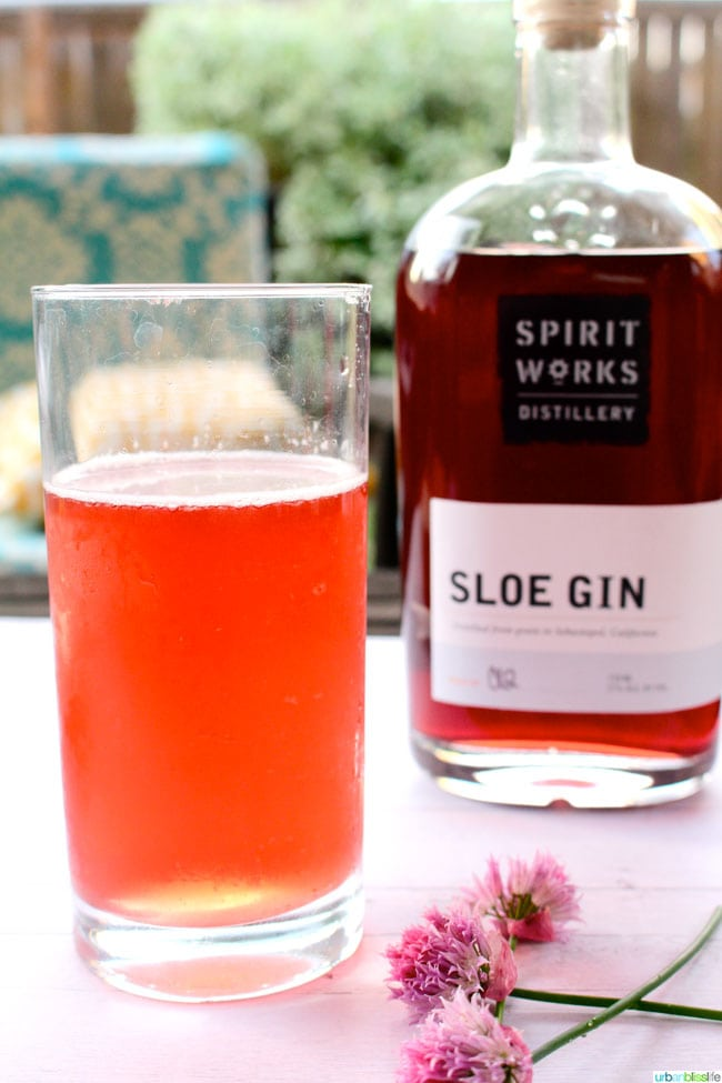 Mixology monday sloe gin fizz recipe urban bliss life for Mixed drinks using gin
