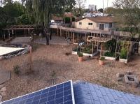 Genesis of an Urban Backyard Farm in Tempe, Arizona ...
