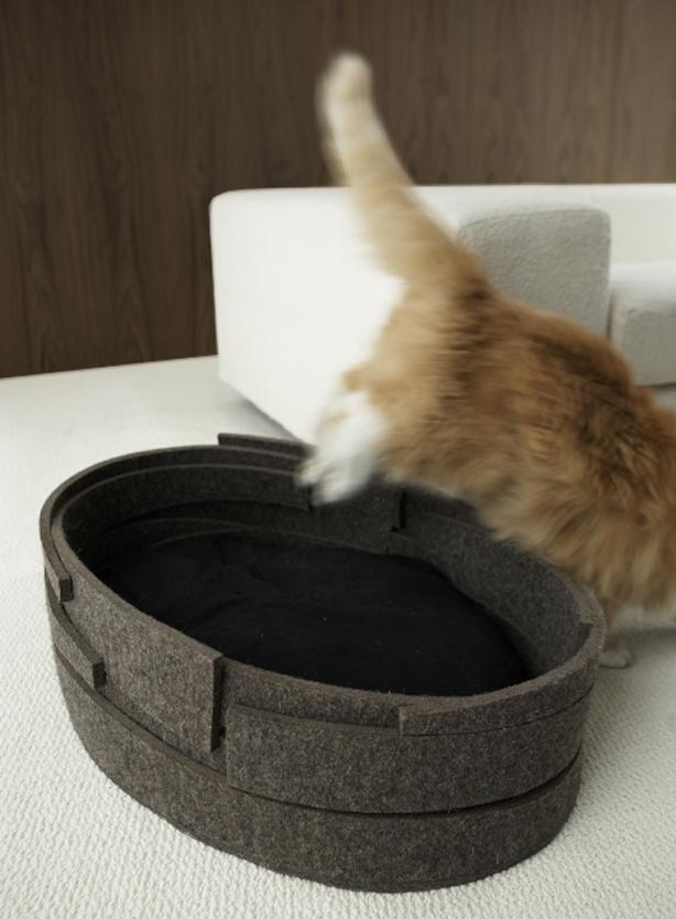 cat_bed1