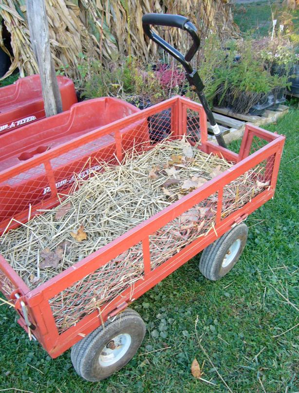 wagon_hay
