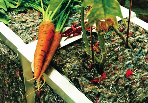 UrbanBuds-veggies