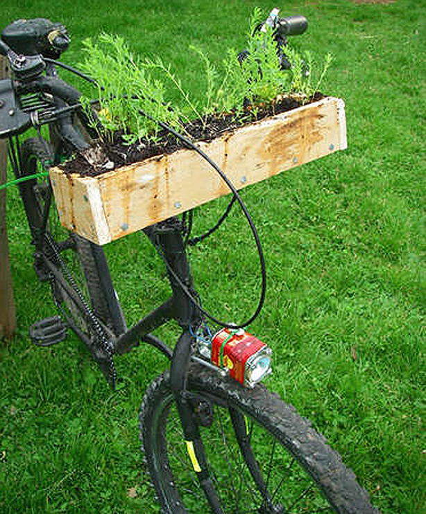 Bicycle-Window-Box--For-the-transient-gardener