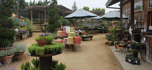Sarah Kinbaru0027s Good Garden Ideas Post About Cottage Gardens Of Petaluma.