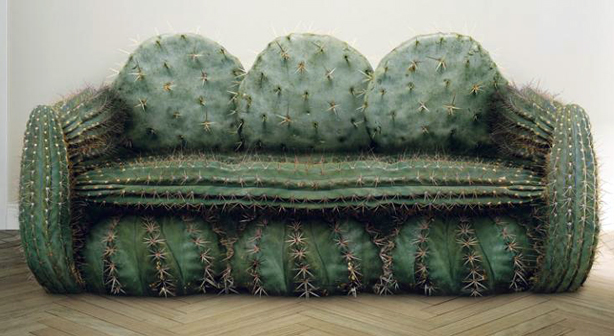Feeling thorny cactus themed designs urban gardens for Canape cactus sofa