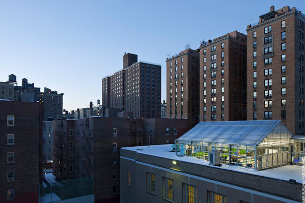 Nyc Rooftop Hydroponic Garden Classroom Urban Farm Greenhouse
