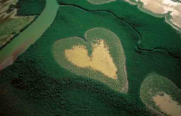 Heart-Shaped-Mangrove-Voh-New-Caledonia