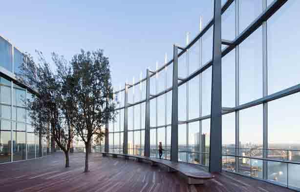 australian-design-review-bligh-trees-deck