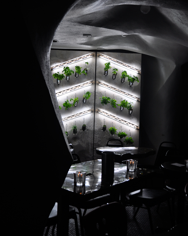 cornell-hydro-wall-stellas-view-urbangardensweb