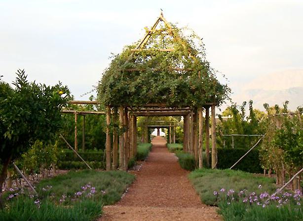 babylonstoren-garden-pergola