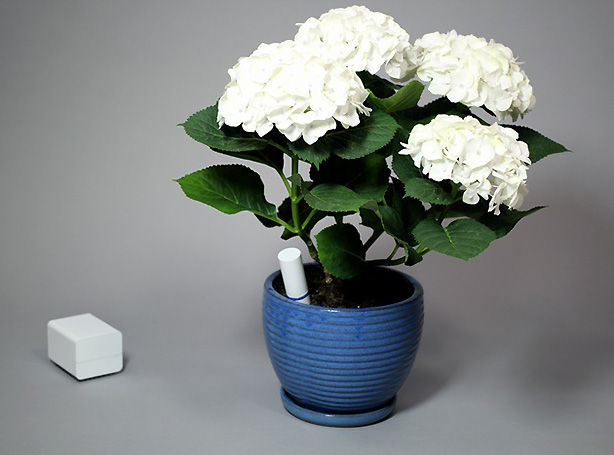 plant-linl-planter-device-urbangardensweb