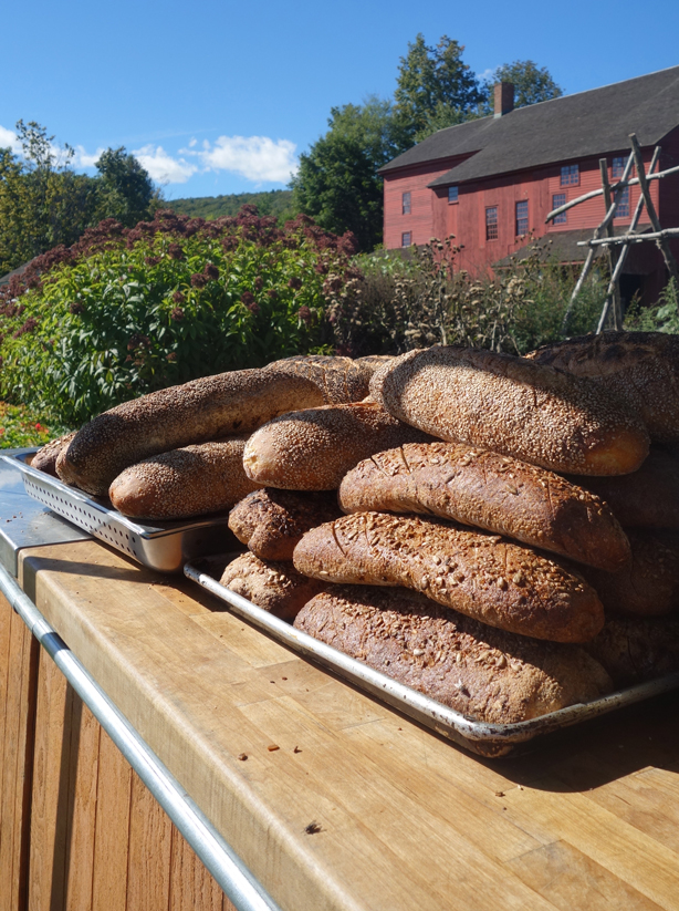 bread-outstanding-in-field-urbangardensweb