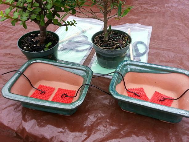 bonsai-101-materials
