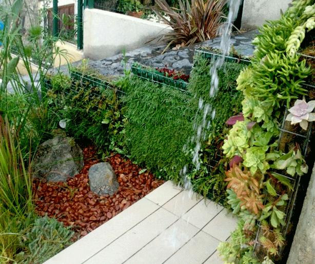 vertical-succulent-garden-outdoor-shower-side-urbangardensweb
