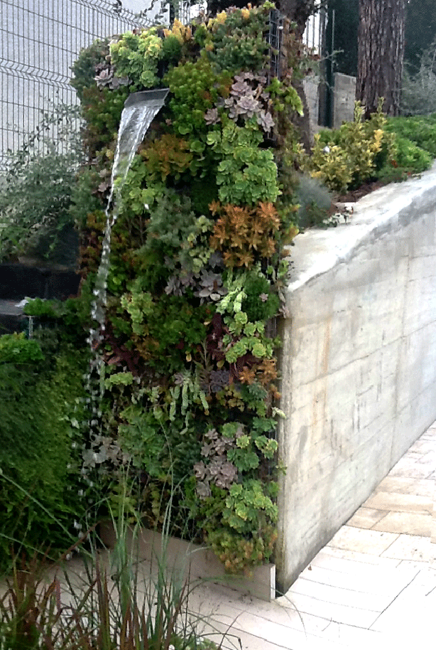 vertical-succulent-garden-outdoor-shower-urbangardensweb