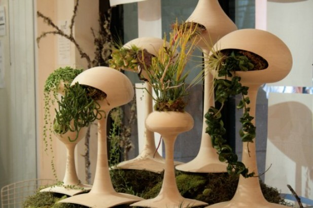 Alien-plant-pots