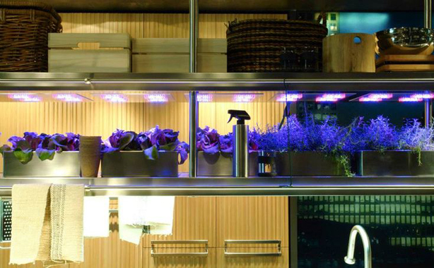 arclinea-indoor-domestic-greenhouse