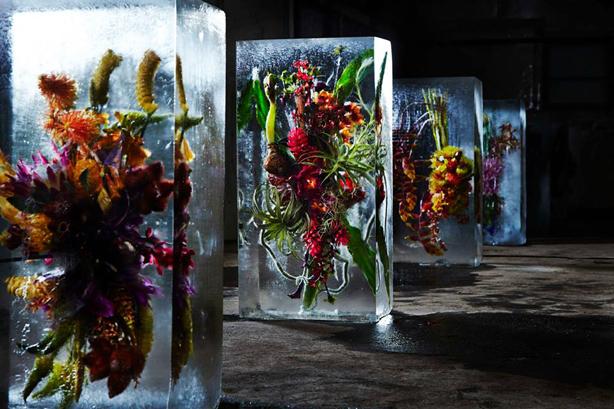 iced-flowers-rows-of-ice-blocks-makoto-azuma-urbangardensweb