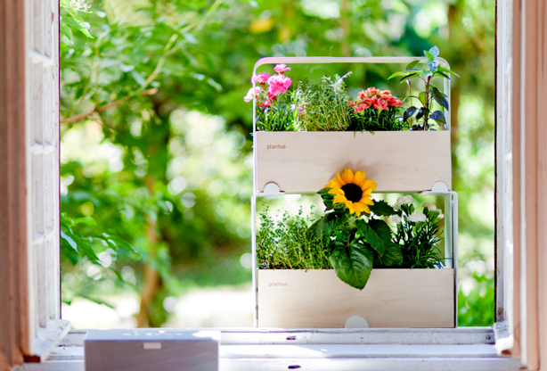 plantus-double-decker-planter-window-box-urbangardensweb