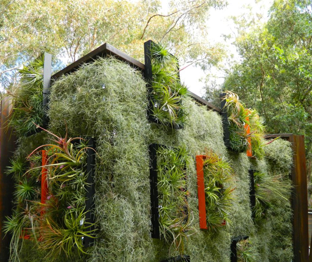 airplantman-solar-panel-green-wall-enclosure-urbangardensweb
