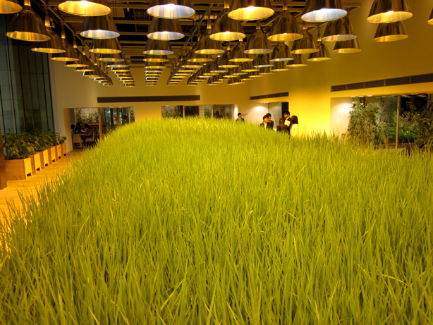 pasona-rice-paddy4_urbangardensweb