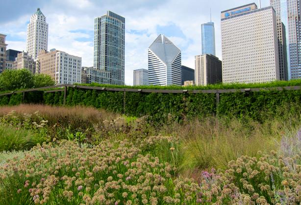 lurie-garden-urbangardensweb