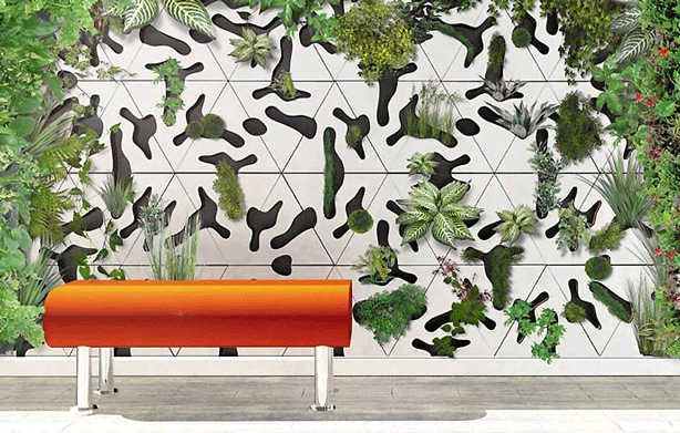 How To Partition Your Living Spaces With Plants