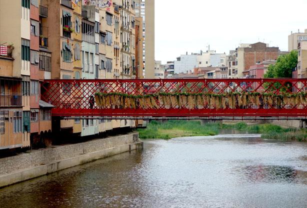 eiffel-bridge-distance-temps-de-flors-urbangardensweb