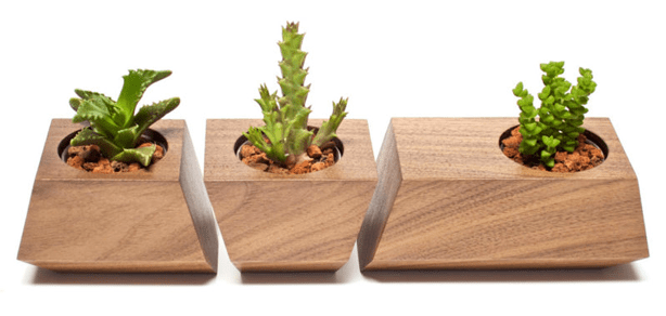 revolution_boxcar_Succulent-Wood-Planter