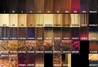 xpression braiding hair color chart xpression braiding ...