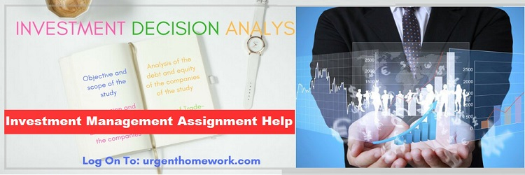 Investment decision analysis Sample Assignment
