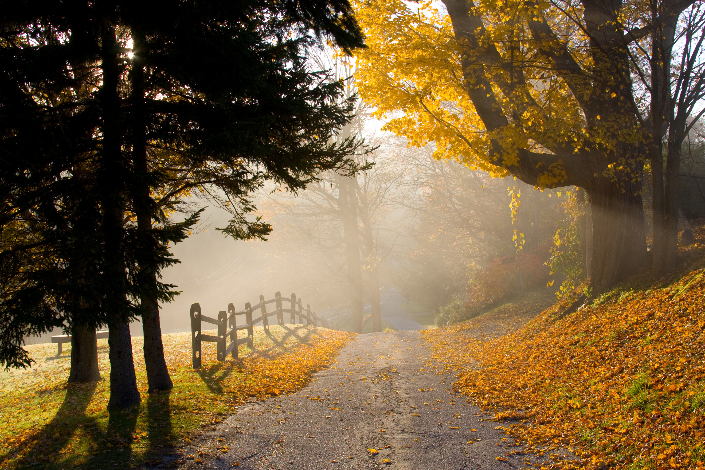 New England Fall Wallpaper Free America S Top 7 Scenic Fall Road Trips Under 500 U S