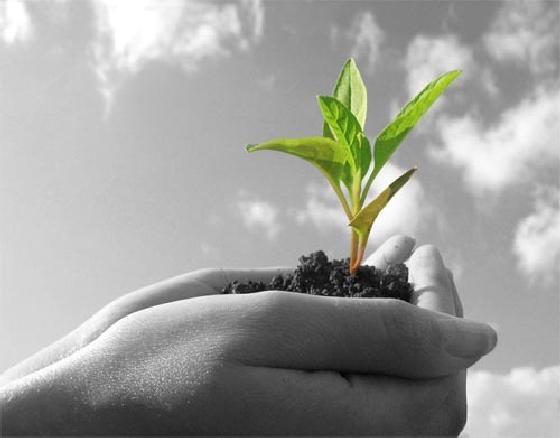 Desarrollando una agricultura más Innovadora