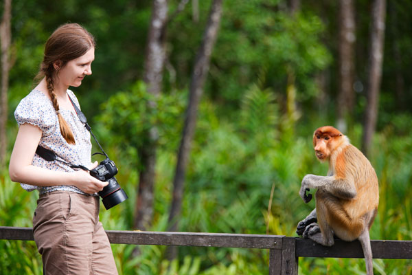 Zoologist Salary What the Job Description Entails for a Zoologist