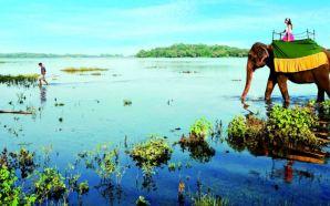 Dünya üzerindeki cennet: Sri Lanka