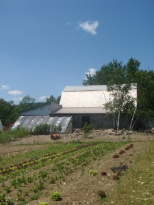 Organic farms often give food and a bed for work
