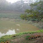 Dhaka lake