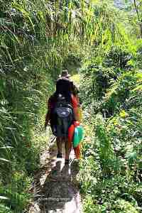 trek to Buscalan
