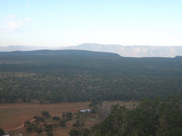 Mountains in the Tonto Forest